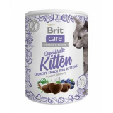 Brit Care Лакомство для котят Superfruits курица, кокос, голубика 100 гр