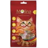 Molina Лакомства Mix рыба,водоросли,дичь для кошек 35 гр
