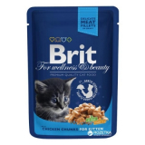 Brit Premium Пауч корм для котят кусочки 100 гр