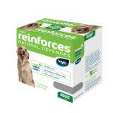 Напиток-пребиотик Вийо (Viyo) для собак